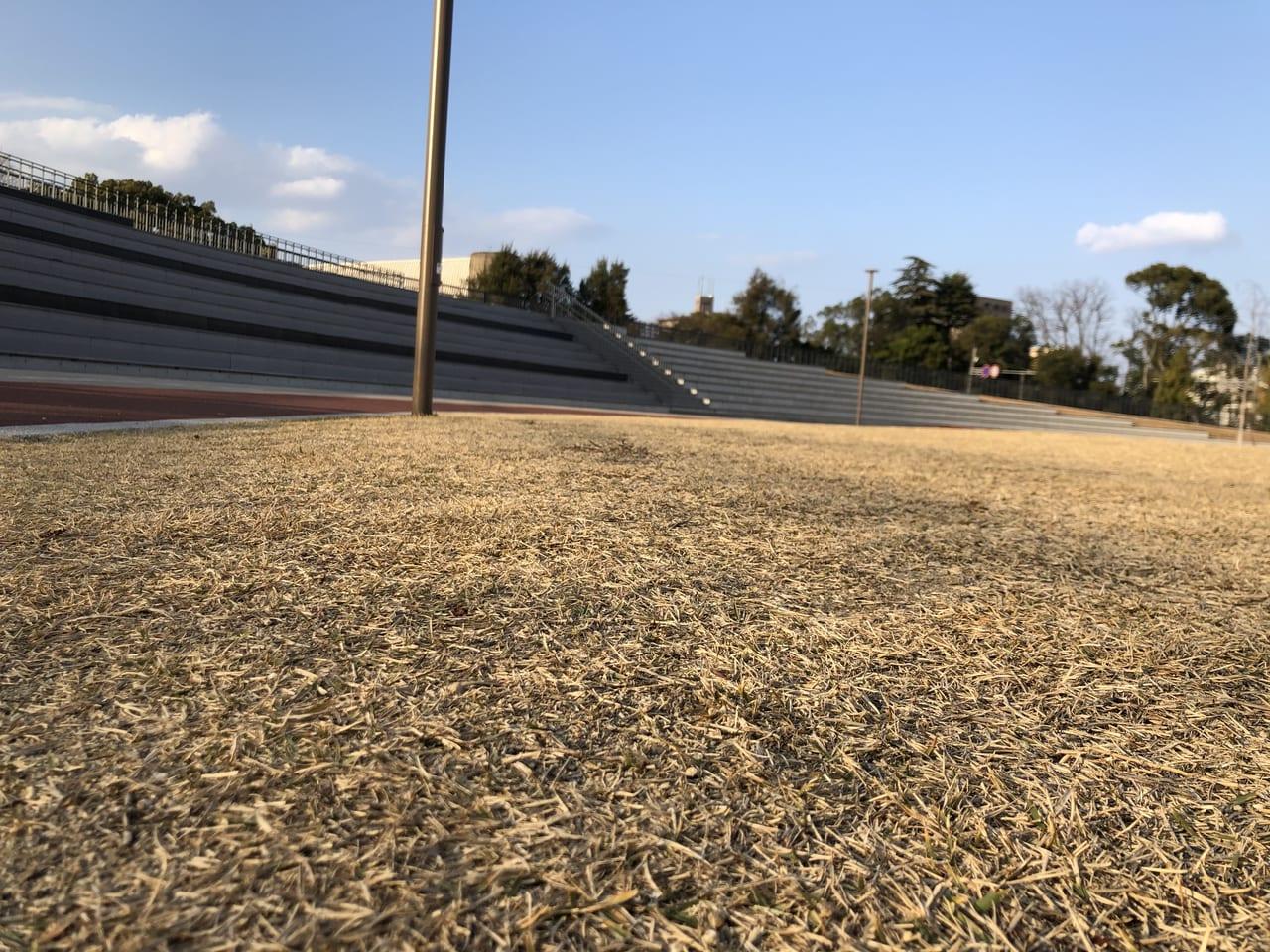 エフピコアリーナふくやま芝生